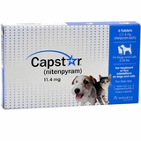 Capstar Flea Treatment for Dogs & Cats