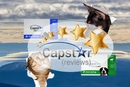 Capstar Reviews
