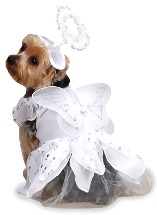Casual Canine Angel Paws Costume - MEDIUM