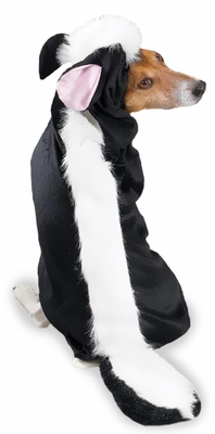 Casual Canine Lil' Stinker Costume - LARGE