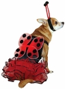 Casual Canine Lucky Bug Costume Red - XSMALL