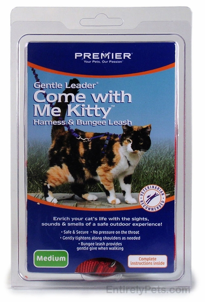 Come with Me Kitty Cat Harnesses