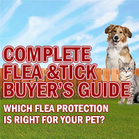 Complete Flea & Tick Buyer's Guide