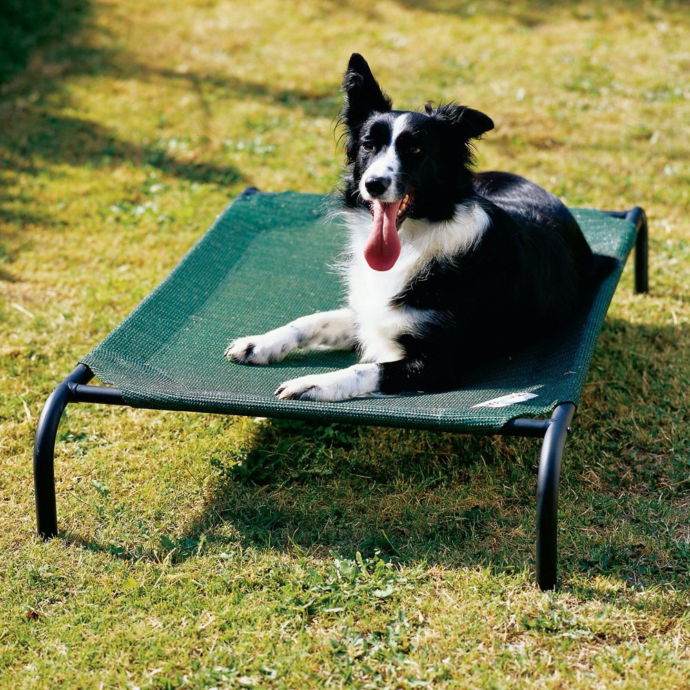COOLAROO Dog Bed | Large Dogs 51.1 x 31.5 | EntirelyPets
