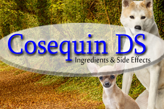 Cosequin DS Ingredients & Side Effects