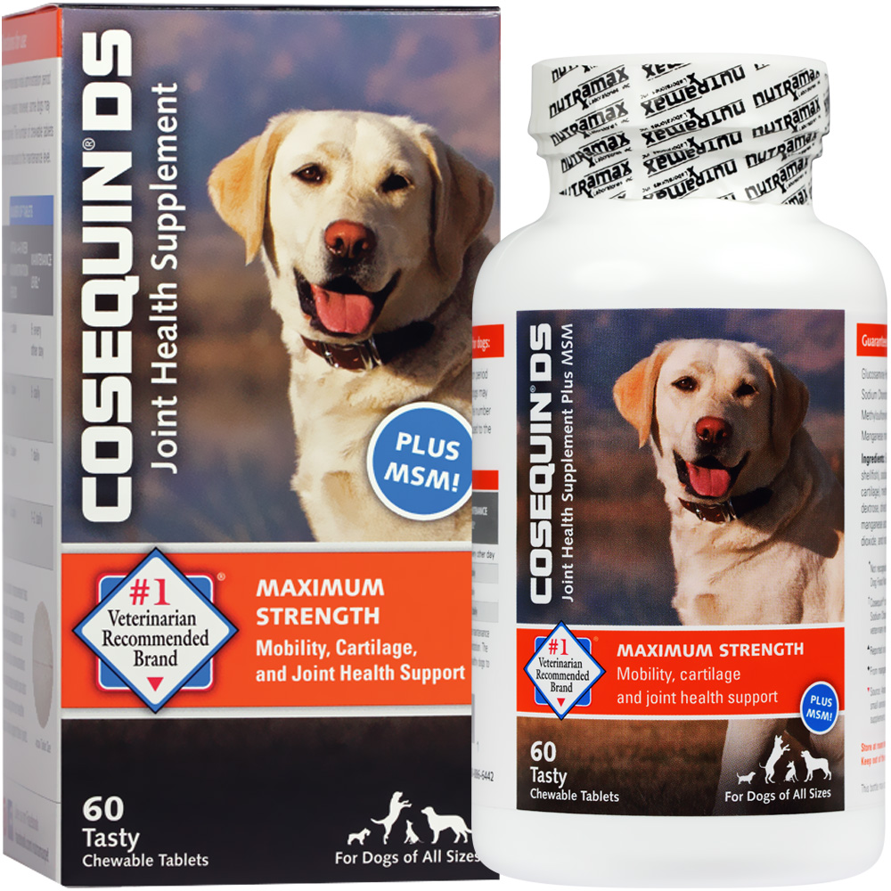 cosequin ds plus msm chewable tablets 60 count. Black Bedroom Furniture Sets. Home Design Ideas