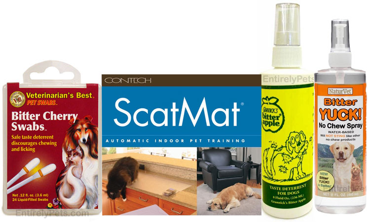 Deterrent Products for Dogs