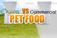 Dog Food Battle! Organic vs Commercial Dog Foods
