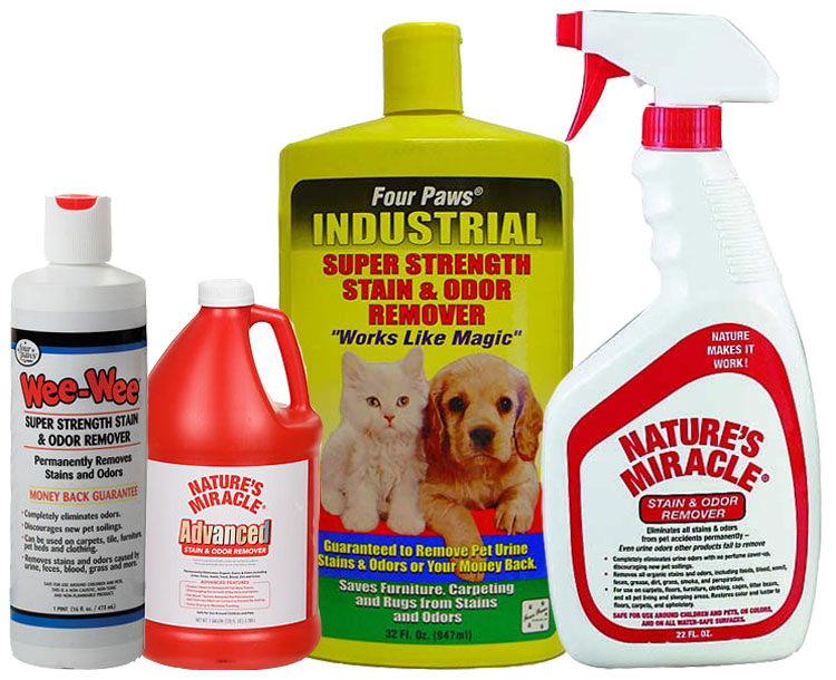 Dogs Stain & Odor Removal