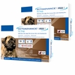 EctoAdvance Plus for Dogs 89-132 lbs (6 Doses)