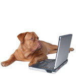 EntirelyPets.com Webmaster Affiliate Program Sharesale
