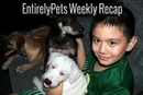 EntirelyPets Weekly Recap (5/19-23/14)