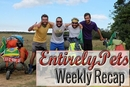 EntirelyPets Weekly Recap (June 9-13, 2014)