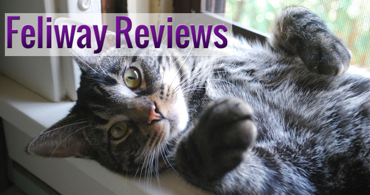 Feliway Reviews
