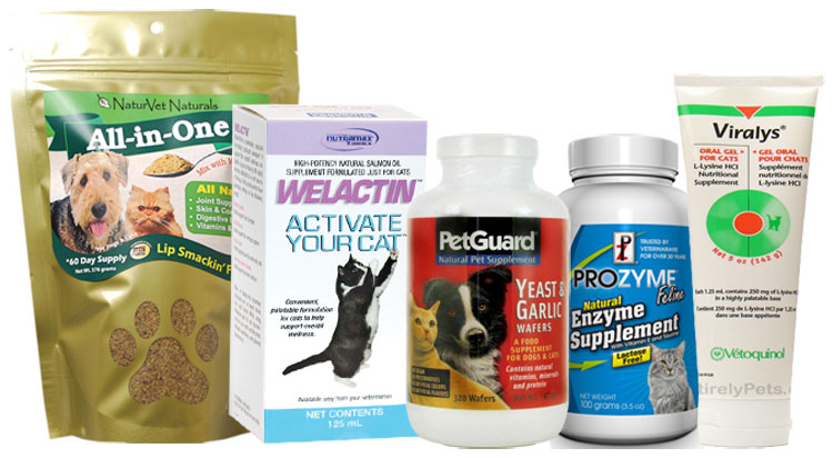 Food Supplements for Cats