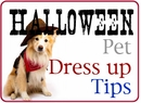 Halloween Pet Dress up TIps