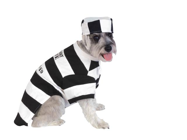 Halloween Prisoner Costume - SMALL