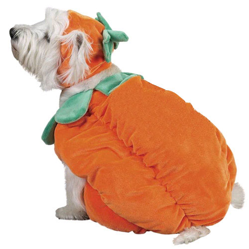 Halloween Pumpkin Costume - LARGE