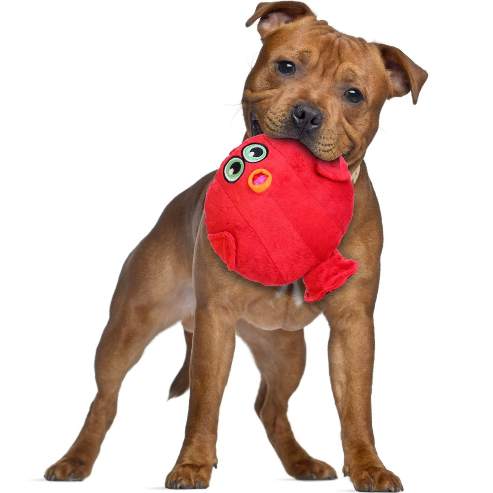 Dog Toys That Squeaks But Only Dogs Can Hear