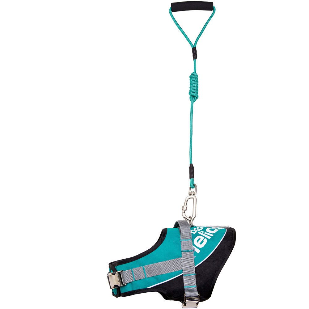 Helios Bark-Mudder Easy Tension 3M Reflective Endurance 2-in-1 Adjustable Dog Leash & Harness - Teal Blue (Small)