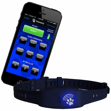 High Tech Pet Bluefang® Training Collars