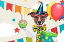 How to Plan the Perfect Party for Your Dog