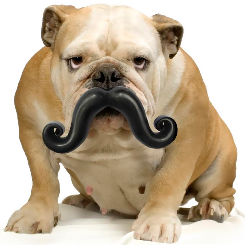 Humunga Stache Ball - Junior