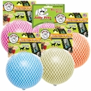 """Jolly Pets Jolly Bounce-N-Play Dog Toy 8"""" -  Assorted"""