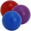 Jolly Pets Push-N-Play Jolly Ball (4.5 in) - Assorted
