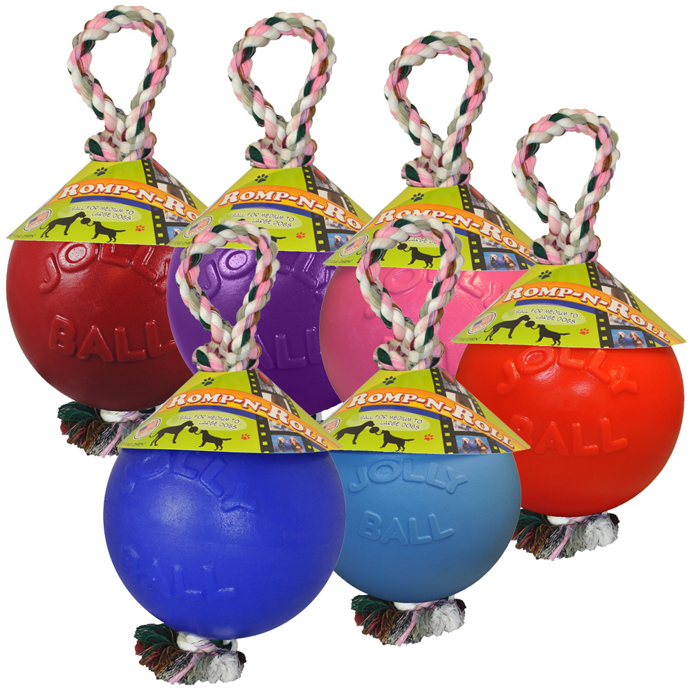 Jolly Pets Romp-n-Roll (6 in.) - Assorted