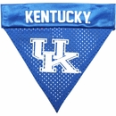Kentucky Wildcats Dog Bandanas