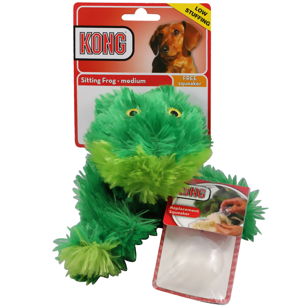 KONG Dr. Noys' Sitting Frog  - Medium