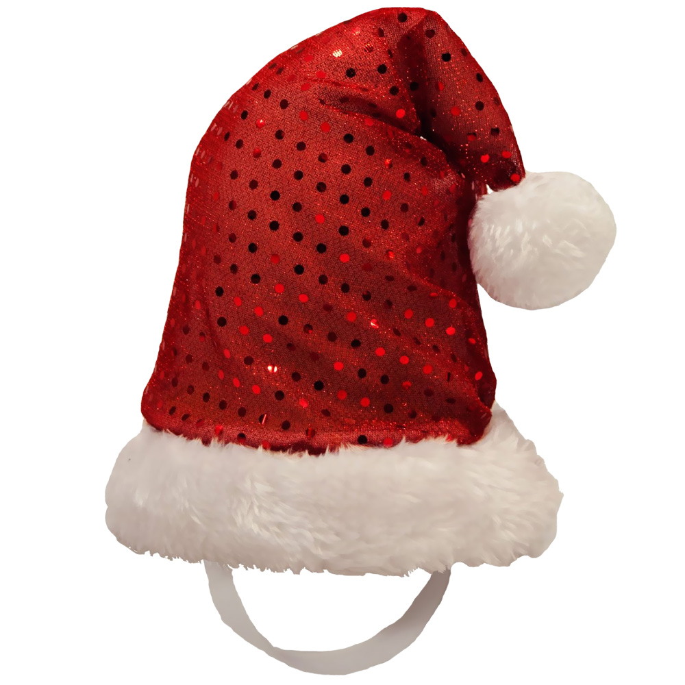 Kyjen Holiday LED Santa Hat - Large