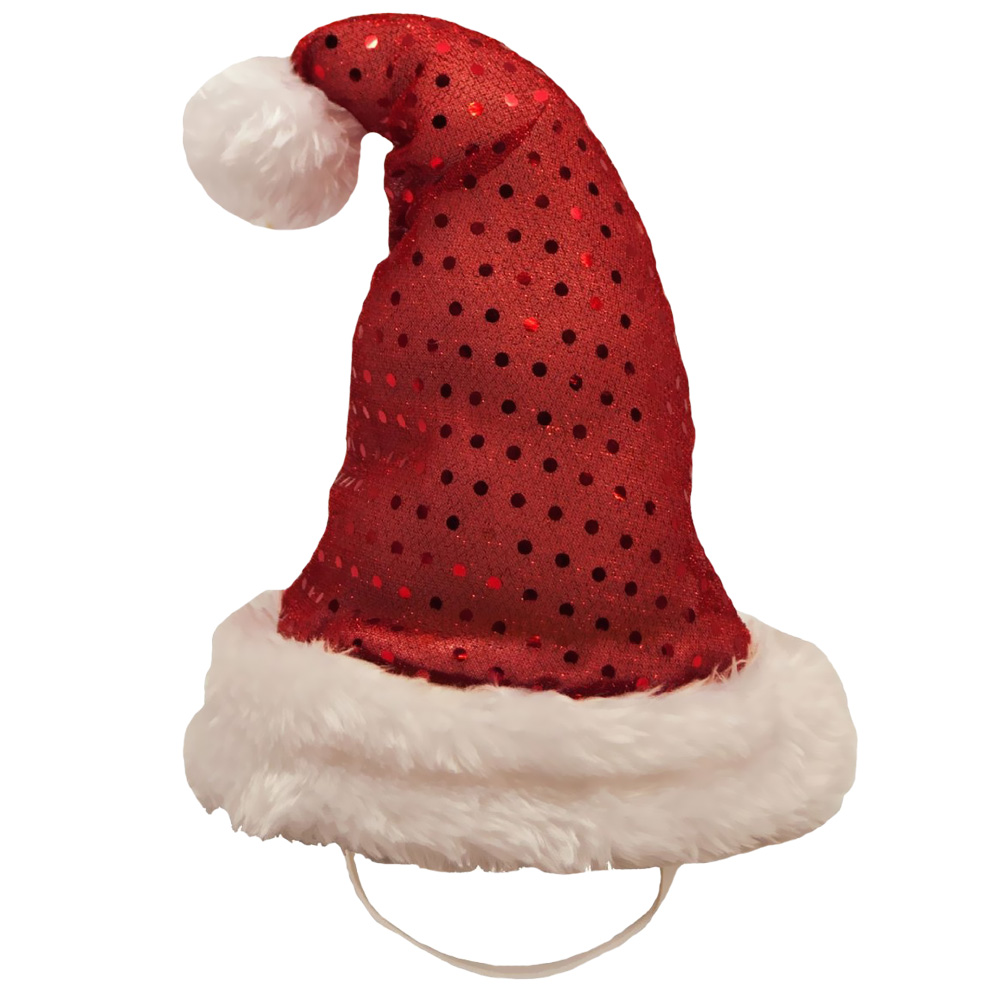 Kyjen Holiday LED Santa Hat - Medium