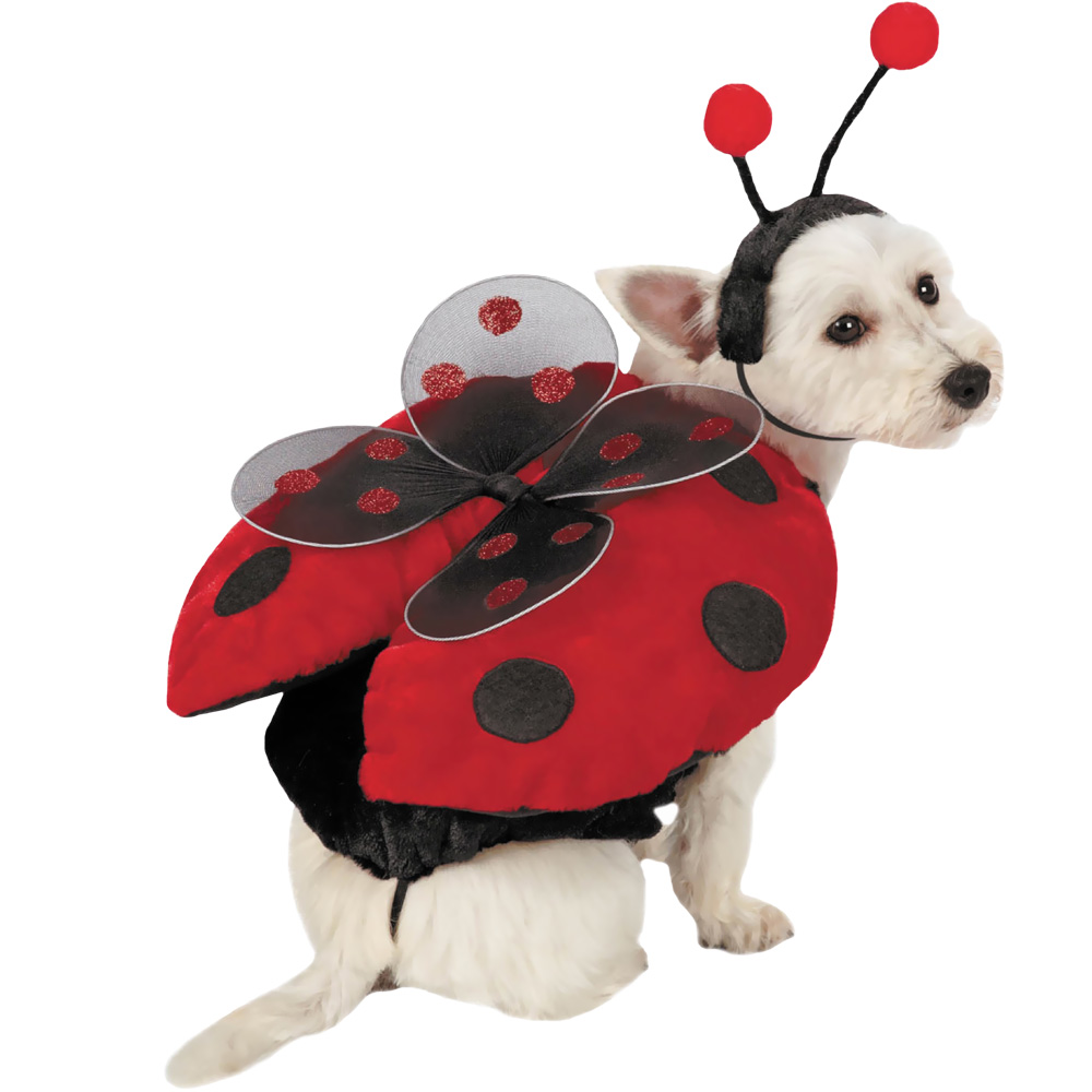 Ladybug with Wings Dog Costume - MEDIUM