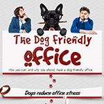 Making Your Office Dog Friendly