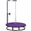 Master Equipment - Small Pet Grooming Table - Purple