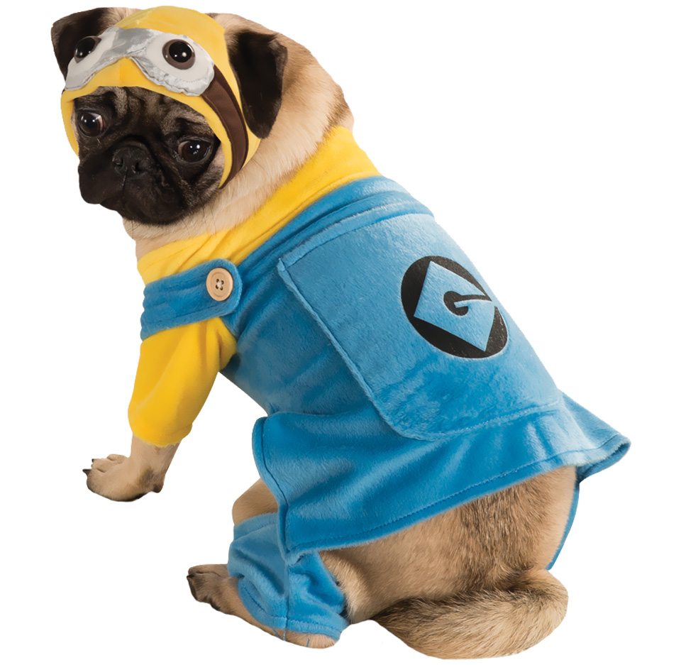 Minion Dog Costume - Medium