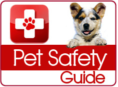 National Animal Preparedness Day