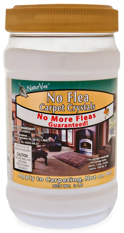 Kill Fleas In House And Backyard Entirely Pets