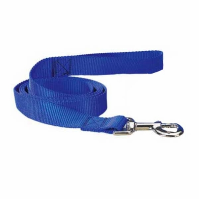 Nylon 6 Foot Dog Leash