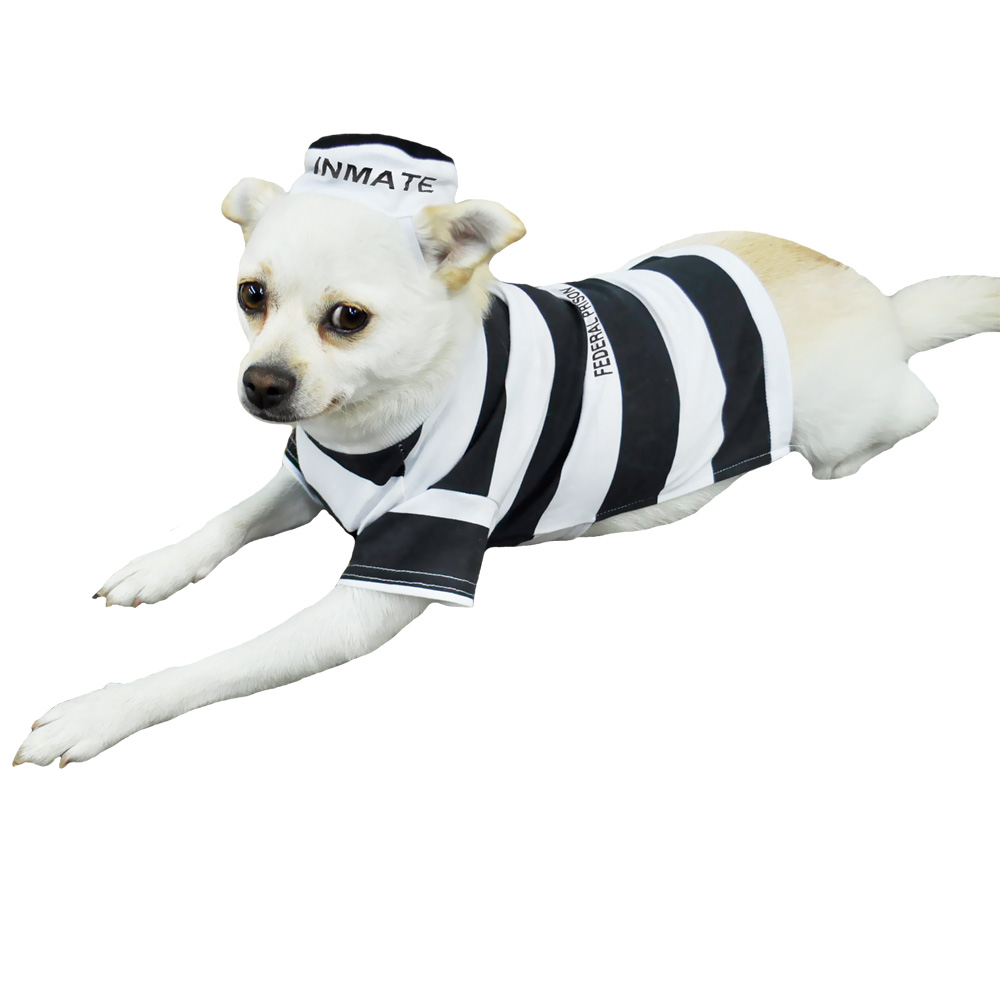 Otis and Claude Fetching Fashion Prison Pooch Costume - LARGE
