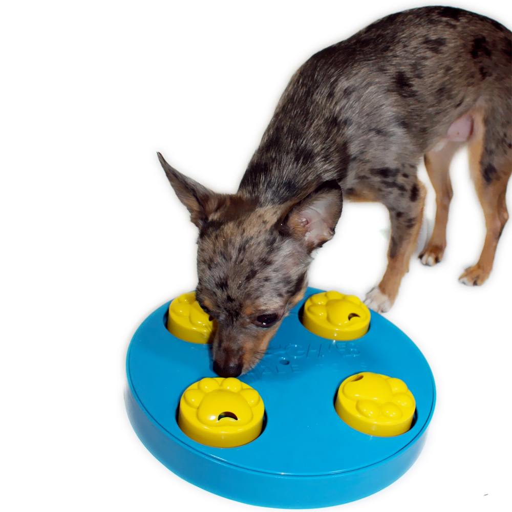 Pets At Home Wheel Treat Dog Toy