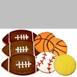 Pawsitively Gourmet Big Fan Sports Pack (20 Cookies)