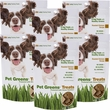 Pet Greens Jerky Dog Treats Roasted Chicken 6-PACK (24 oz)