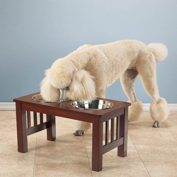Pet Studio Elevated Stainless Steel Bowls