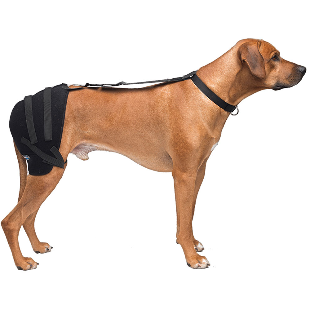 Pet Therapy Wrap with Therapy Gel - Hip (Large)