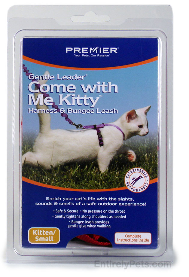 "Premier ""Come with Me Kitty"" Cat Harness & Bungee Leash"