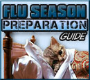 Preparing Your Dog For Flu Season