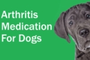 Prescription Arthritis Medication for Dogs